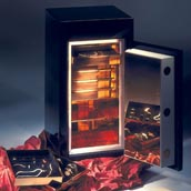 Traum Safe - Security